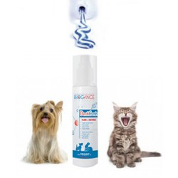 Dentifresh spray hygiène bucco dentaire chien chat