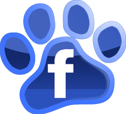 solidarite pa hope pet food reseau adoption collecte facebook