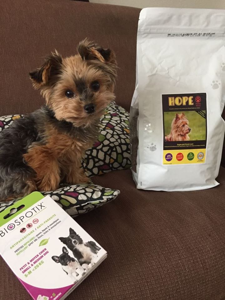 Hope pet food vos animaux en photo